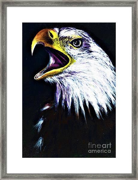 Bald Eagle - Francis -audubon Framed Print