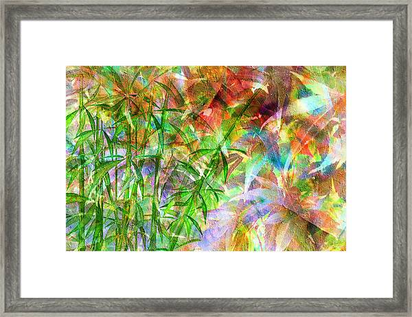 Bamboo Paradise Framed Print