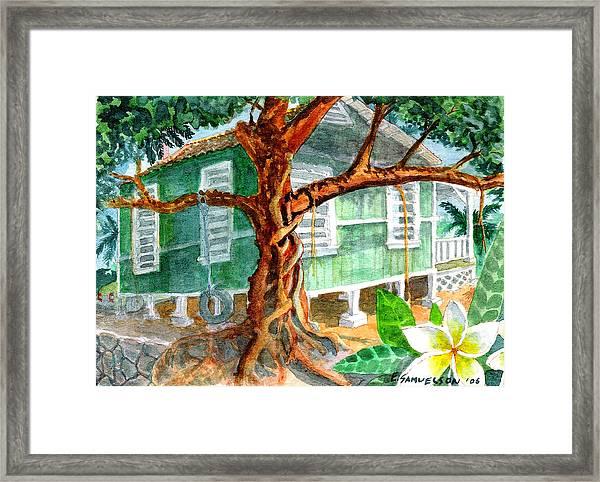 Banyan In The Backyard Framed Print