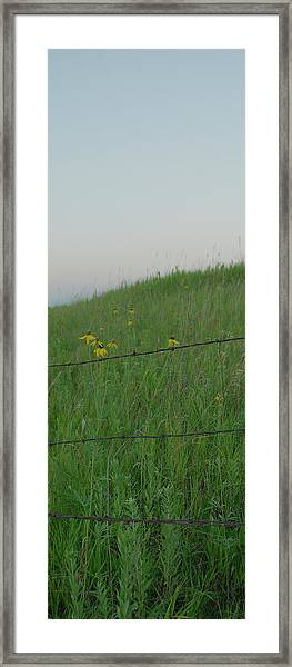Barb Wire Prairie Framed Print