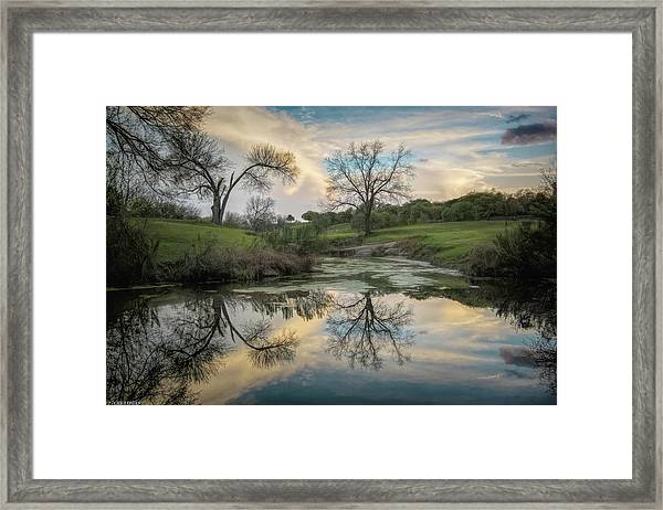 Bare Tree Reflections Framed Print