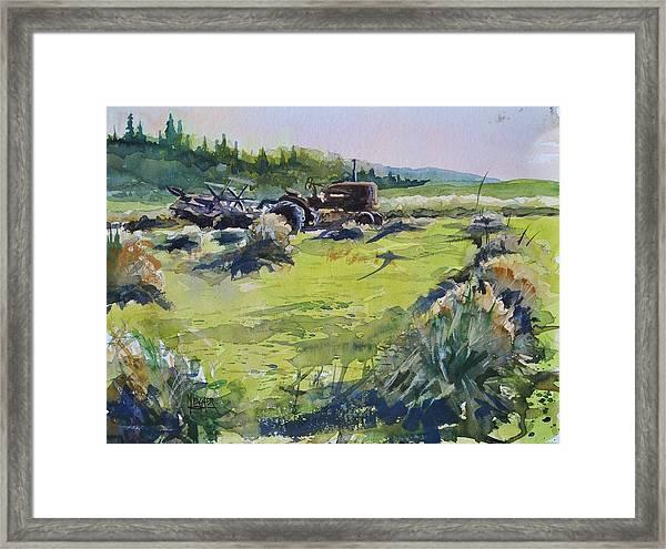 Barley Harvest Framed Print