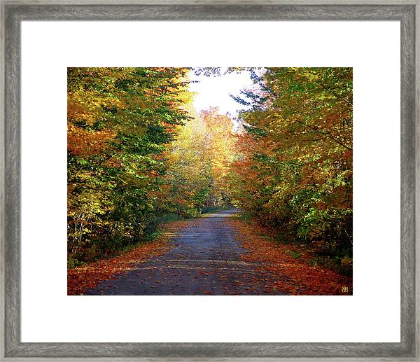 Barnes Road - Cropped Framed Print