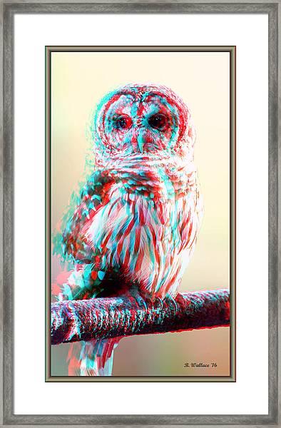 Barred Owl - Use Red-cyan 3d Glasses Framed Print