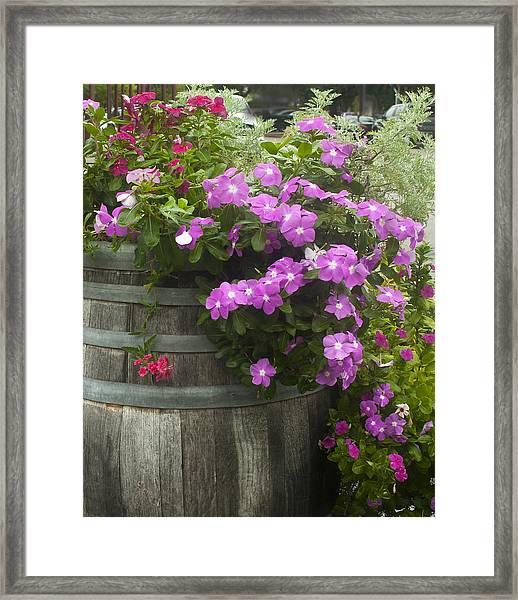 Barrel Of Flowers Framed Print