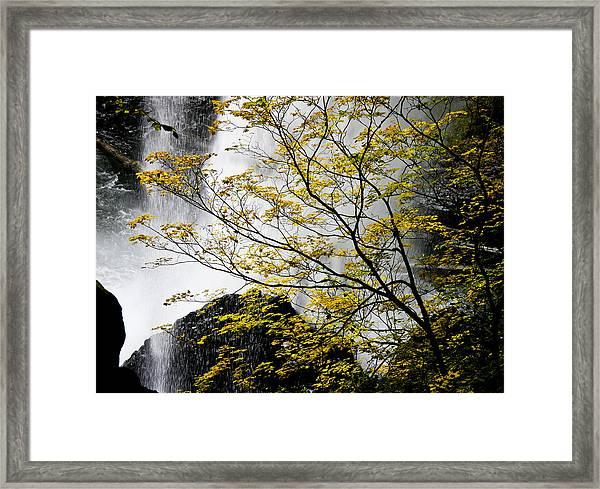 Base Of The Falls. Framed Print