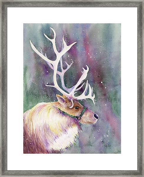 Basking In The Lights Framed Print