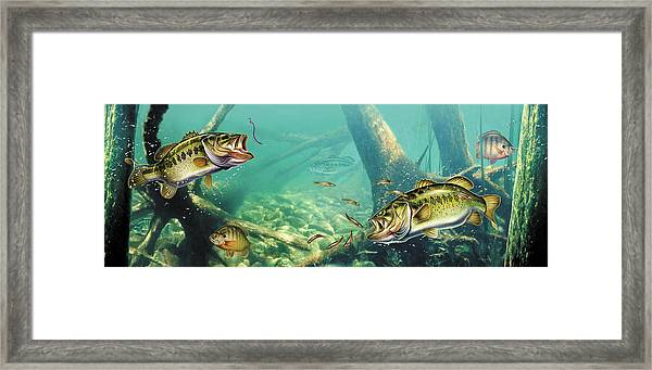 Bass Lake Framed Print