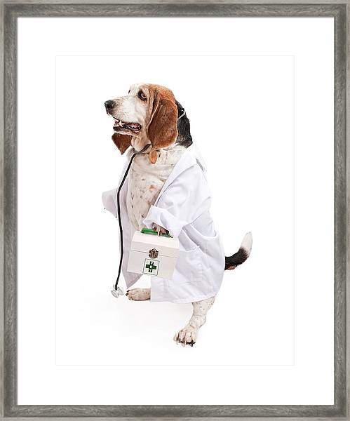 Basset Hound Dog Dressed As A Veterinarian Framed Print