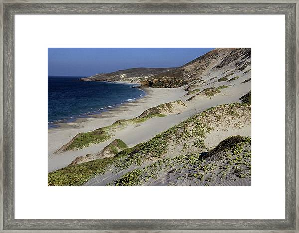 Bay Beach And Sand Dunes Framed Print