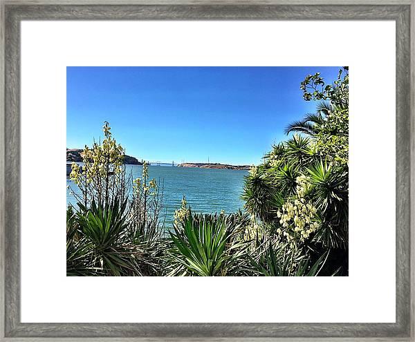 Bayview Framed Print