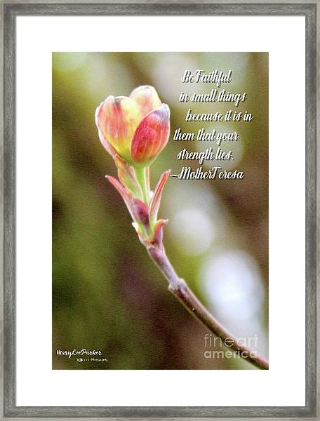 Be Faithful By Mother Teresa Framed Print