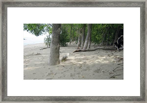 Beach At The Lake Framed Print