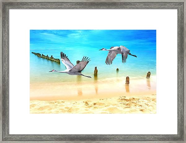 Beach Beauties Framed Print