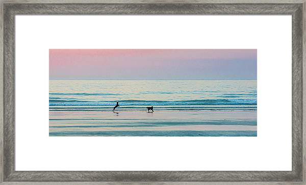 Beach Dogs Playing At Dawn Framed Print