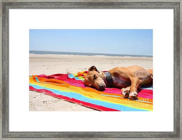 Beach Dreams Are Made Of These Framed Print
