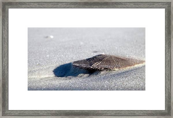 Beach Money Framed Print