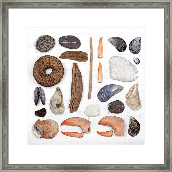 Beach Treasure Flat Lay Framed Print