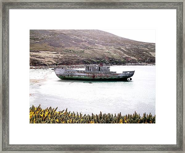 Beached Beauty Framed Print