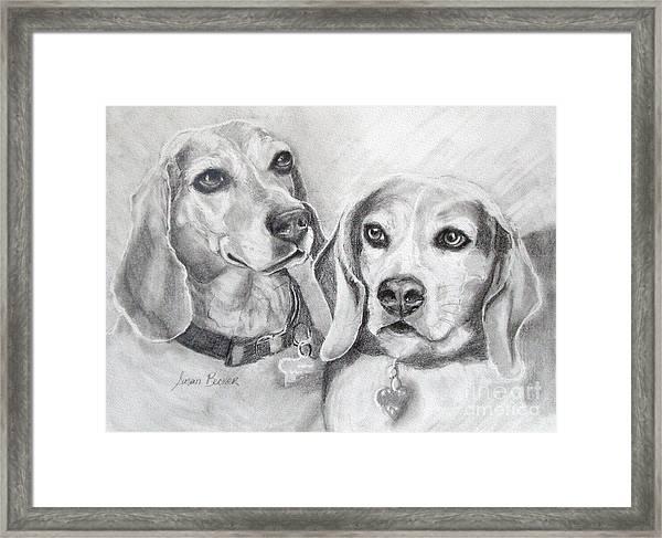 Beagle Boys Framed Print