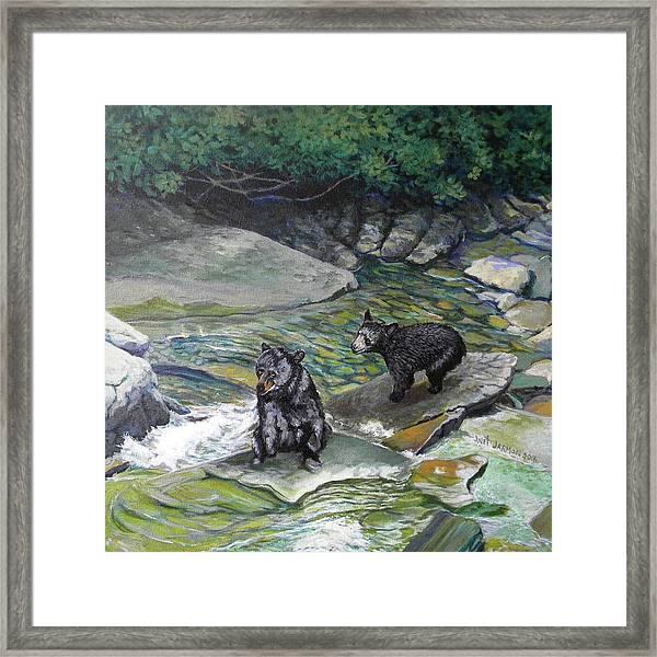 Bear Creek Framed Print