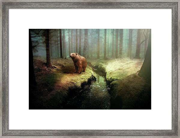 Bear Mountain Fantasy Framed Print