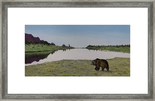 Framed Print featuring the painting Bear Reflecting by Kevin Daly