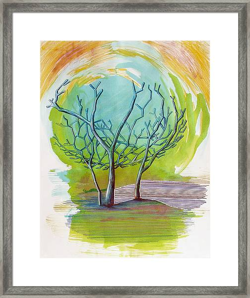 Beautiful By Mistake   Framed Print
