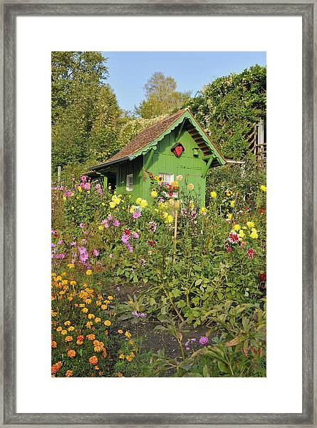 Beautiful Colorful Flower Garden Framed Print