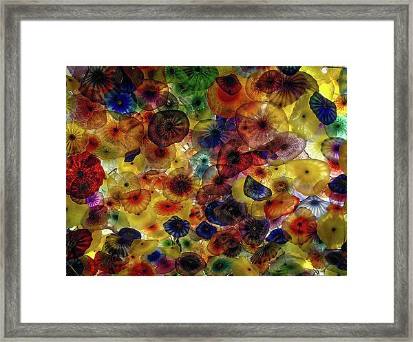 Beautiful Colors Framed Print
