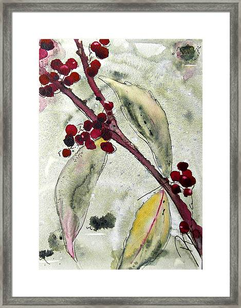 Beauty Berry Branch Framed Print