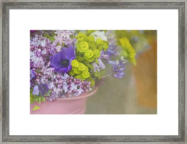Beauty In A Bucket Framed Print
