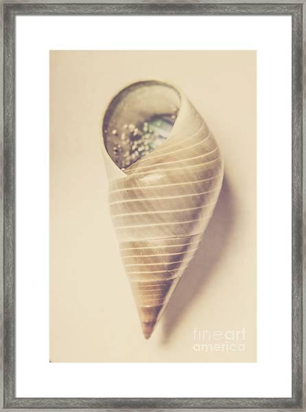 Beauty In Oceanic Symmetry Framed Print