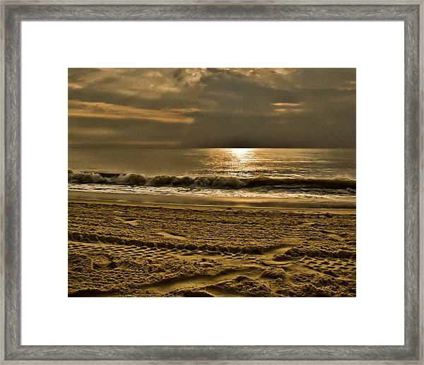 Beauty Of A Day Framed Print
