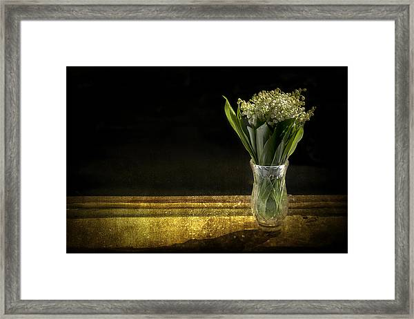 Beauty Of The Valley Framed Print