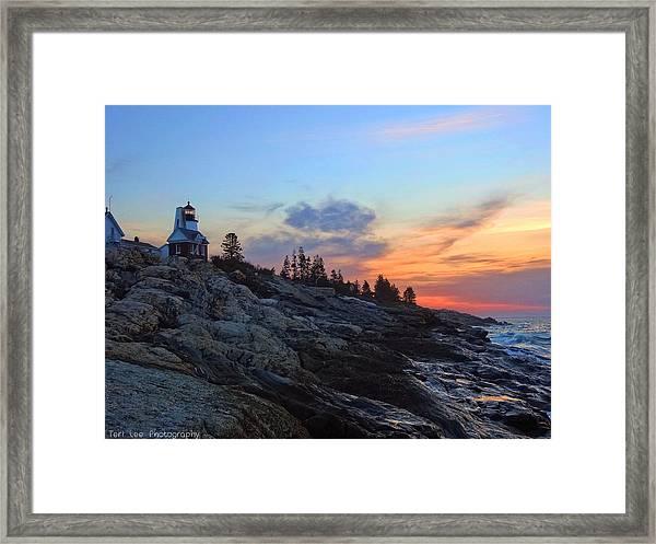 Beauty On The Rocks Framed Print