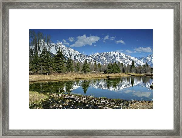 Beaver Dam Framed Print