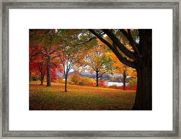 Beaver Park Framed Print