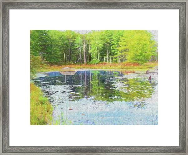 Beaver Pond Reflections Framed Print