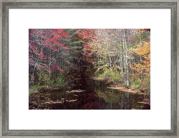 Beaver's Haunt Framed Print