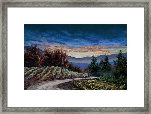 Beckman's Billowing Nets Framed Print