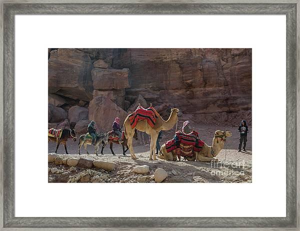 Bedouin Tribesmen, Petra Jordan Framed Print