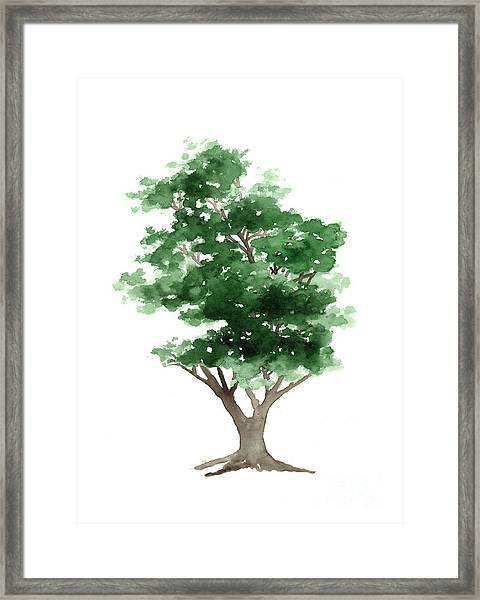 Beech Tree Silhouette Watercolor Art Print Painting Framed Print