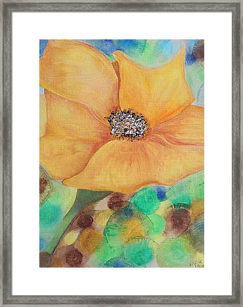 Bees Delight Framed Print