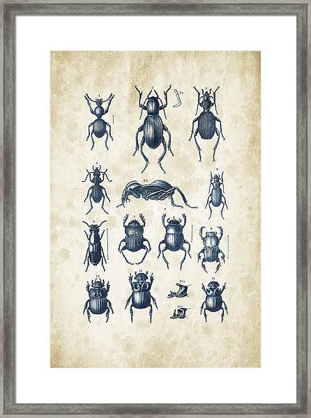Beetles - 1897 - 01 Framed Print