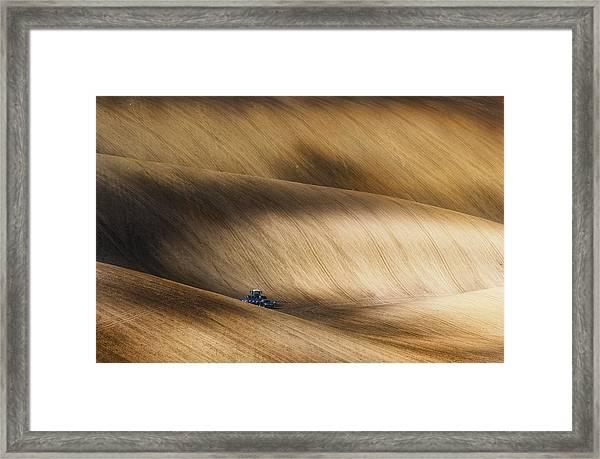 Before Seeding Framed Print by Piotr Krol (bax)