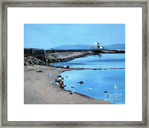 Before The Fog At Castle Island Framed Print