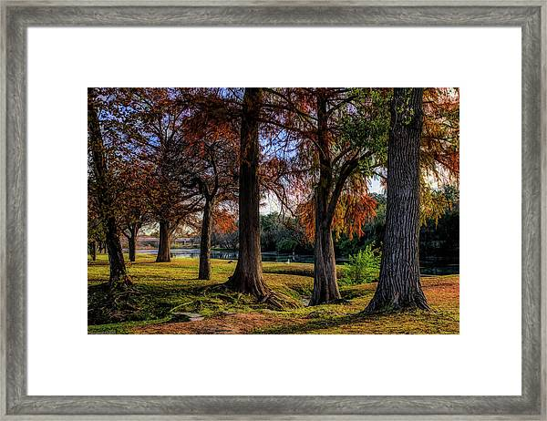 Beginning Of Fall In Texas Framed Print
