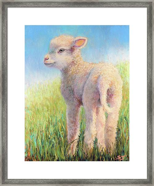 Behold The Lamb Framed Print