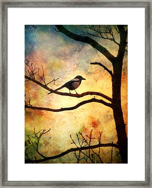 Believing In The Morning Framed Print